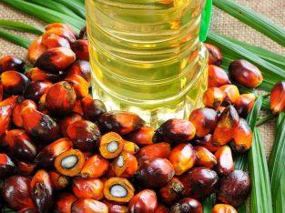 Recherche l'huile de palme