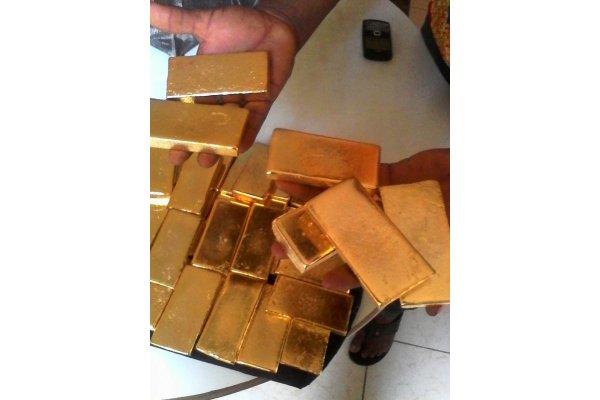 300 kg d'or pépites et lingots