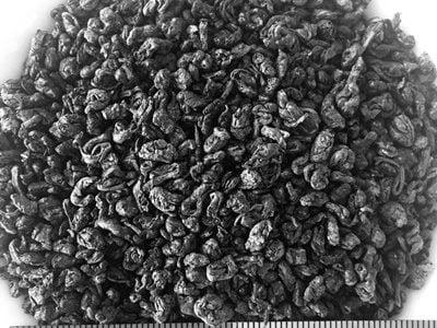 thé vert de Chine gunpowder 3505