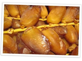 Export of dates, deglet nou